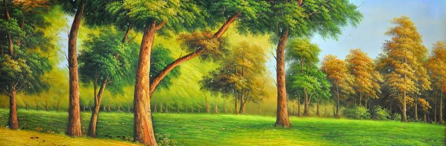 高清背景秋天的小树林高清背景图片素材下载