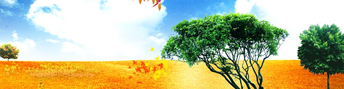自然背景banner