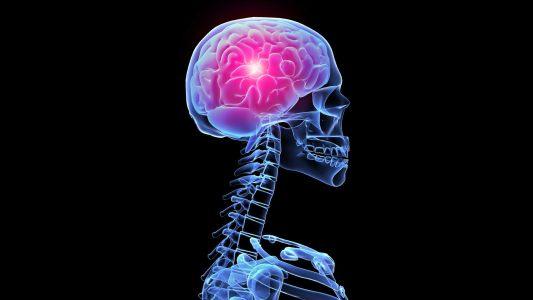 科技大脑背景
