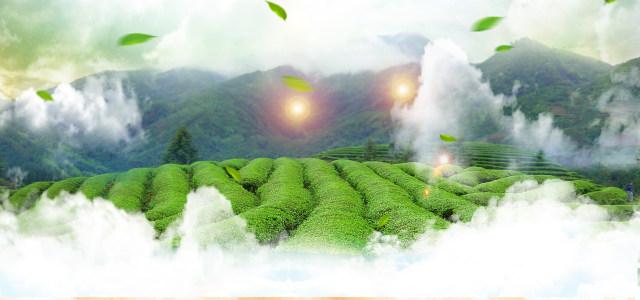大山绿色背景