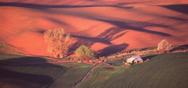 红色山坡背景