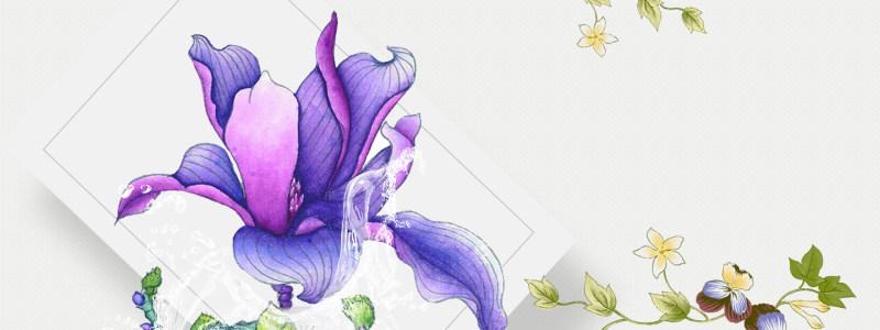 矢量花朵几何背景