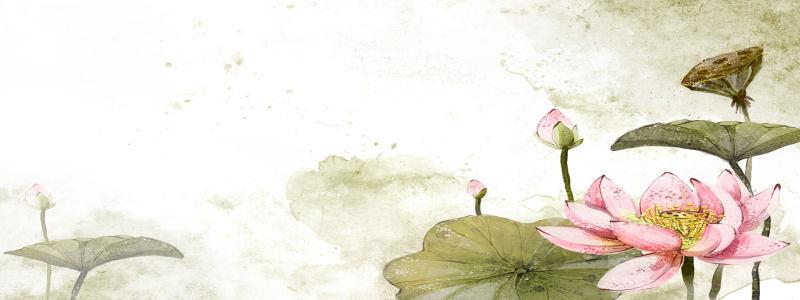 中国风荷花背景高清背景图片素材下载