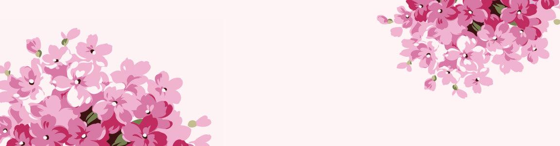 花草粉色花朵背景banner