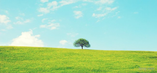 自然风景背景高清大图-自然风景背景自然/风光