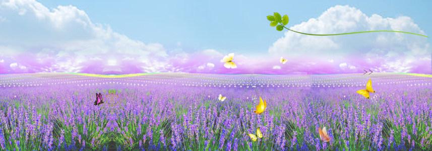 紫色梦幻花园淘宝海报背景