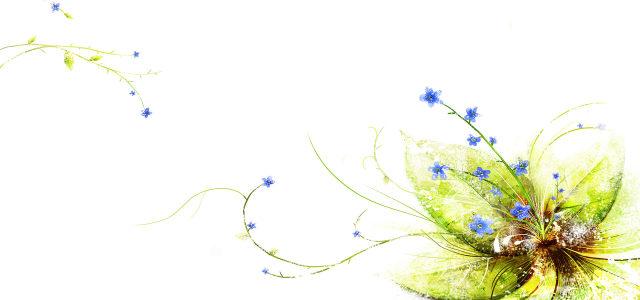 花藤植物背景