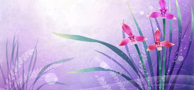 紫色浪漫水仙花背景