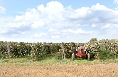 美国农场高清背景图片素材下载