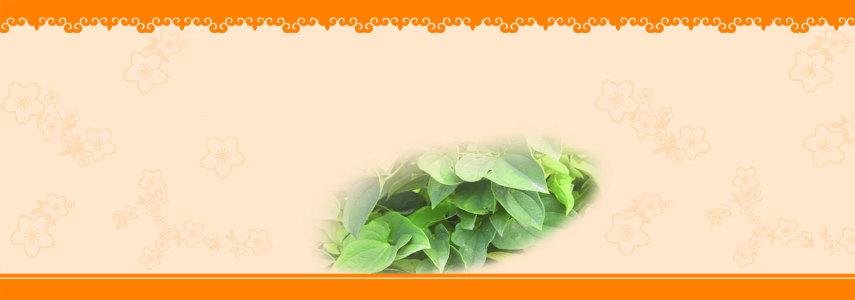 茶叶banner创意设计
