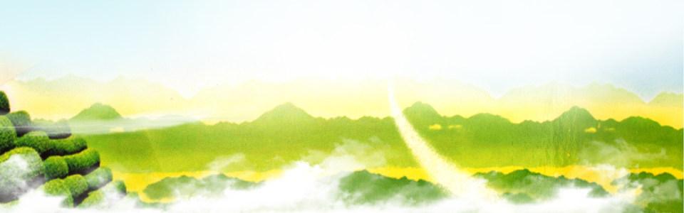 绿色树林背景