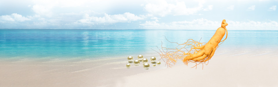 海滩珍珠人参背景
