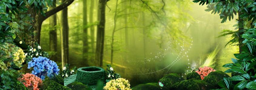 唯美绿色森林淘宝海报背景高清背景图片素材下载