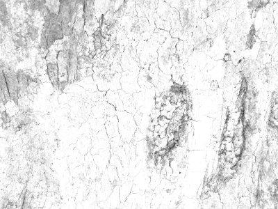 白色材质纹理背景
