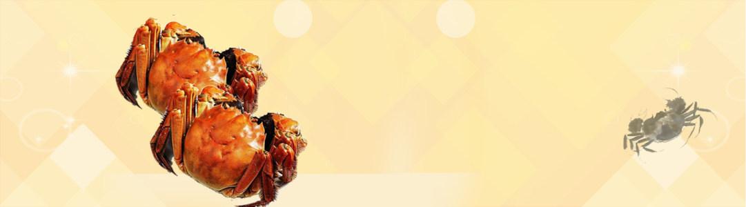 大闸蟹banner创意设计高清背景图片素材下载