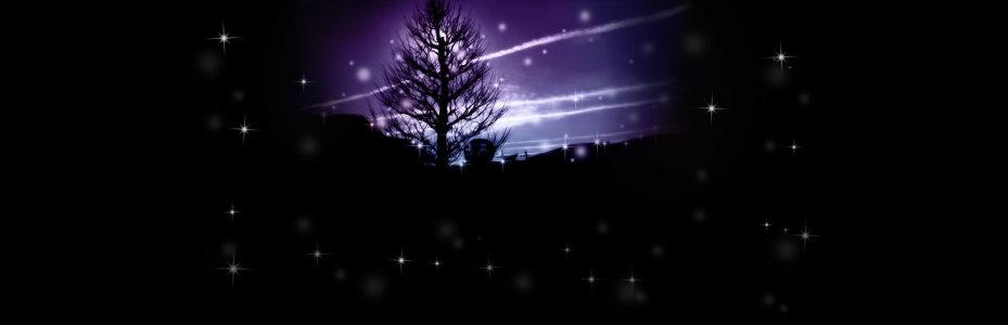 黑色夜景树林背景banner