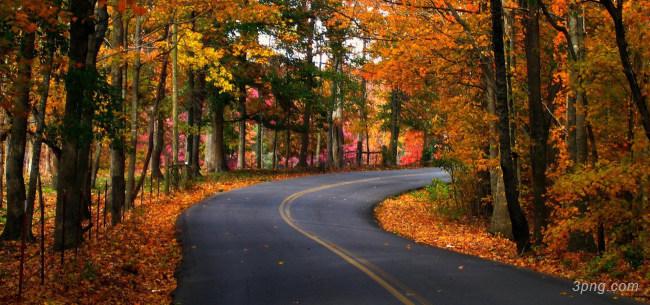 林间公路背景背景高清大图-林间背景自然/风光