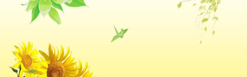 向日葵淡黄色背景