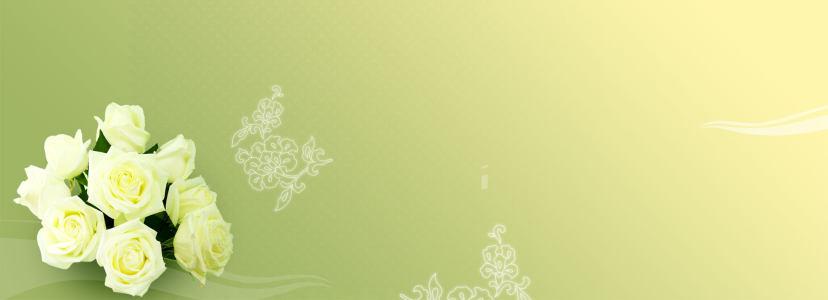 白色玫瑰清新唯美背景banner
