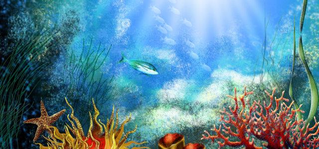 水底世界背景