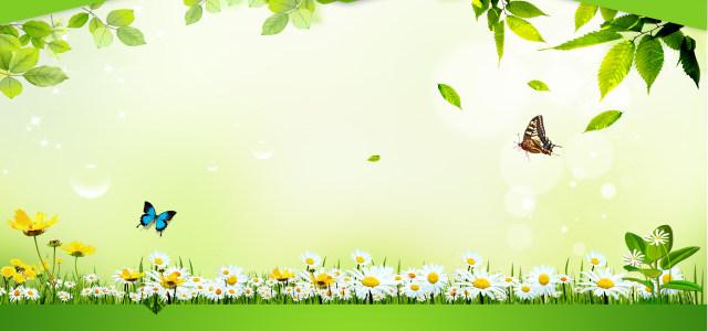绿色大自然背景