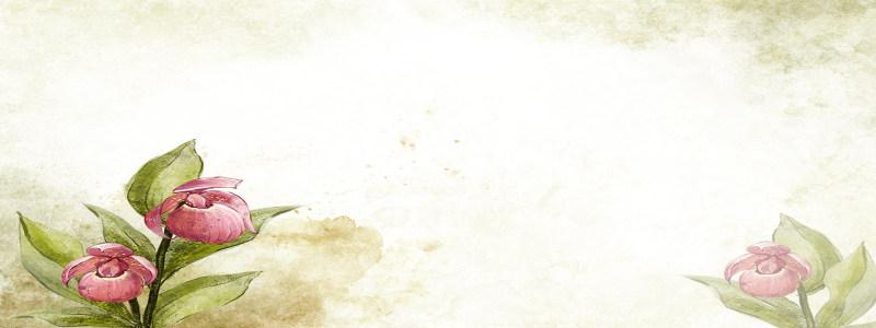 水墨花卉背景高清背景图片素材下载