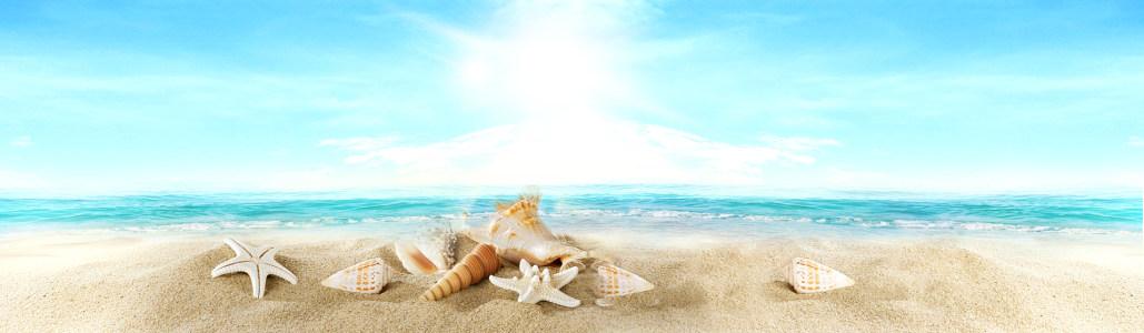 阳光大海海星背景高清背景图片素材下载