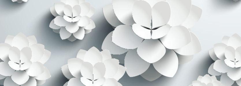 白色立体花唯美背景banner