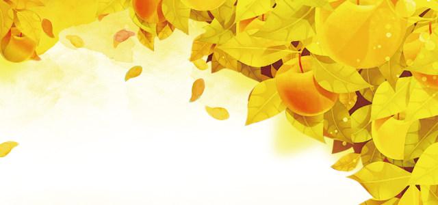 秋天风景背景