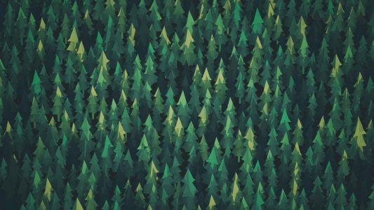 清新绿色森林背景高清背景图片素材下载