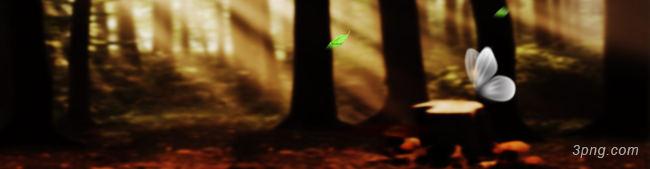 梦幻森林背景高清大图-森林背景其他图片