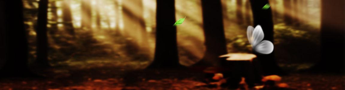梦幻森林高清背景图片素材下载