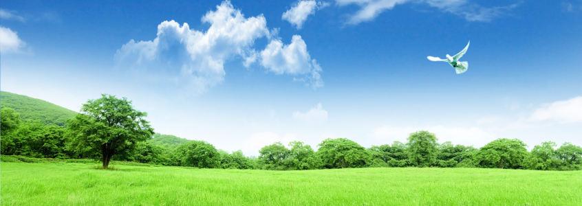 环保背景高清背景图片素材下载