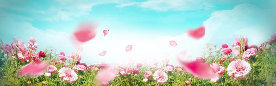 温馨花朵背景