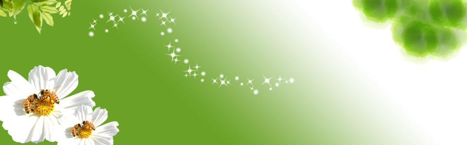 清爽绿色海报背景