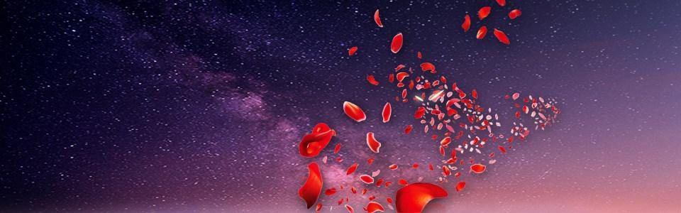 浪漫花瓣背景